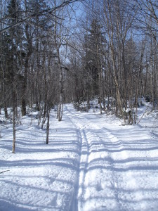 Gully-Lake-Ski-Trail-225x3001