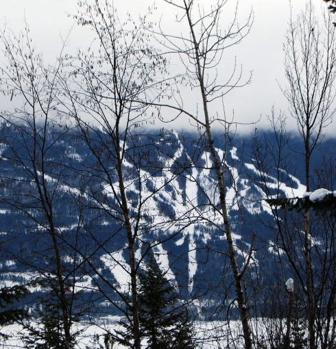Mount MacKenzie (aka Revelstoke)