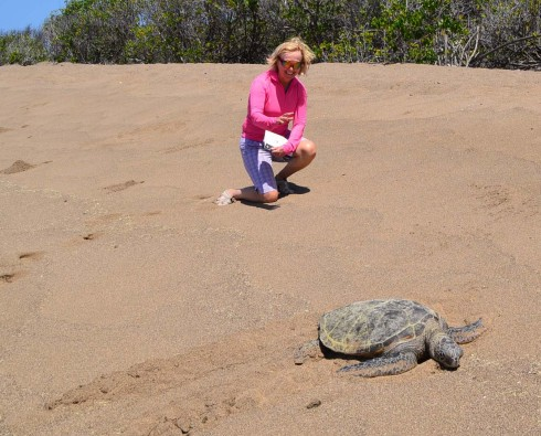 Alison & Green Sea Turtle