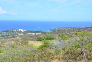 Kona Coast from Mountain Course