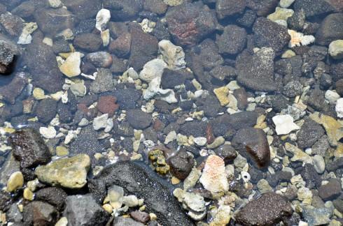 Hale O Keawe tide pool