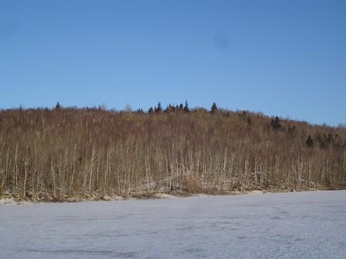 Panuke Lake Nature Preserve
