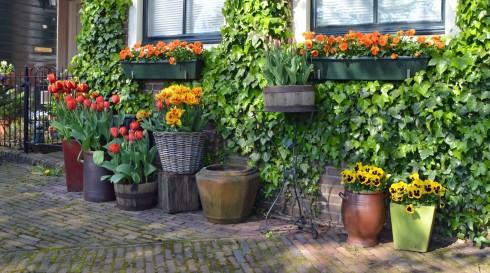 Spaarndam garden