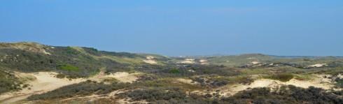 Castricum dunes