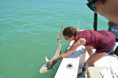 Lenore releasing Dale's shark