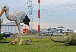 Stork and Triceratops