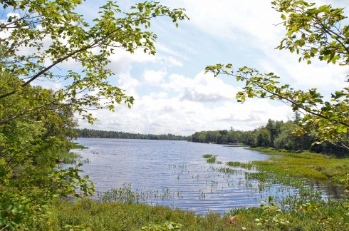 Black Point Lake