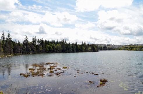 Lovett Lake
