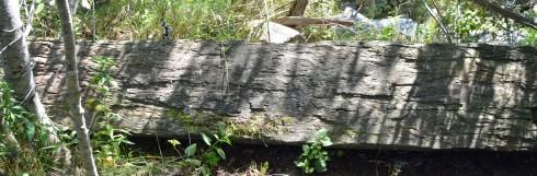The Oak Island marking stone