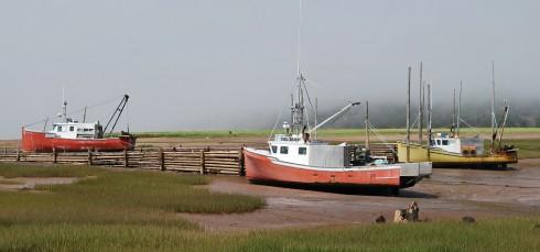 West Apple River Fleet