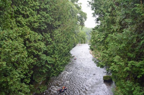 Elora Gorge - The tubers are safe