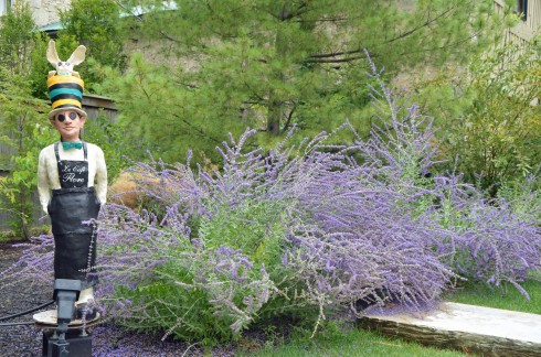 Lavender Man, Elora