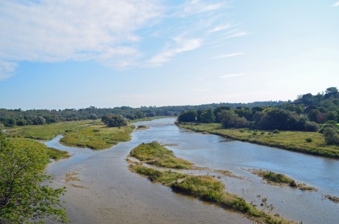 Maitland River from Menesetung Bridge