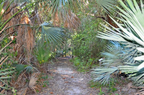 Southern Dunes Trail