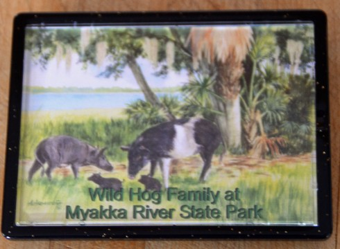 Wild Hog magnet