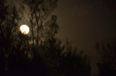 Southampton Moonrise