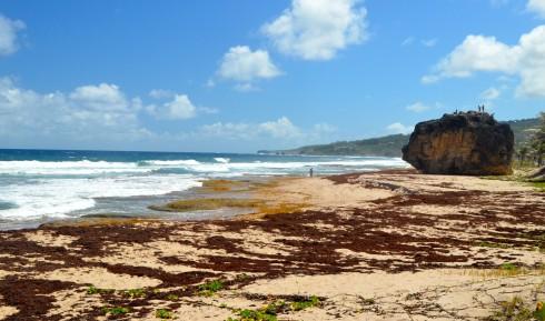 Cattlewash Beach, northern Barbados