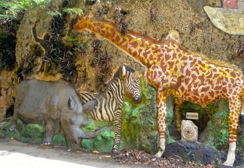 Giraffe, Zebra and Rhino