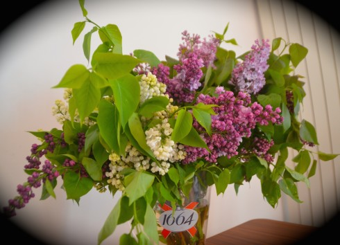 Fresh Lilacs in Montmartre