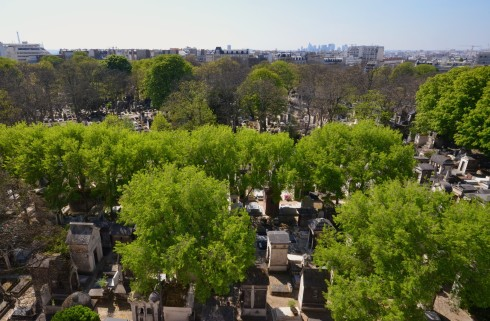 View of Montmartre Cemetery from 34 Rue de Jesph du Maitre