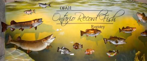 Ontario Record Fish at the Kawarthas Hunting and Fishing Centre