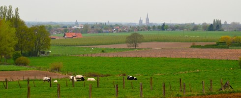 View of Ypres from Mount Sorrel