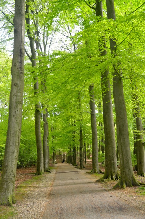 Sonsbeek Park, Arnhem, Holland