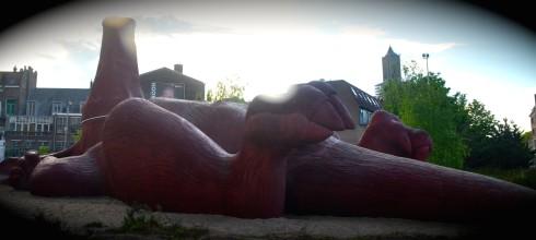 Arnhem and the dead Aardvark