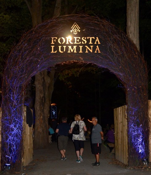 Entrance to Foresta Lumina