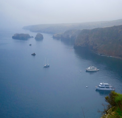 Boats moored at Santa Cruz Island