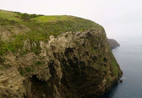 Santa Cruz Island cliffs