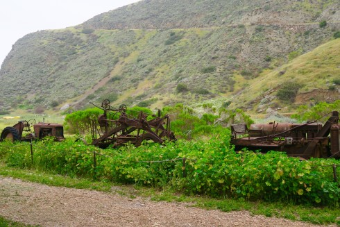 Old Farm Machinery on Santa Cruz Island