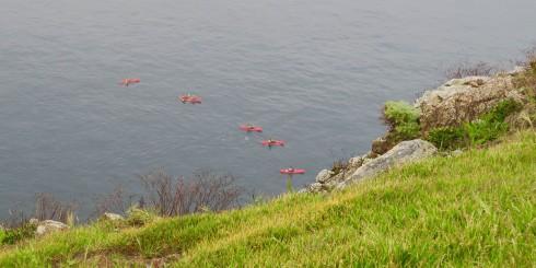 Kayakers on Santa Cruz Island
