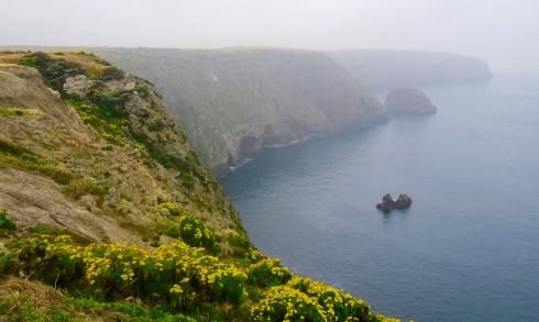 Santa Cruz Island view