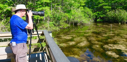 Ready to photograph at Six Mile Cypress