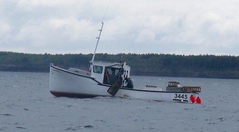 Hauling Traps off the Bird Islands Nova Scotia