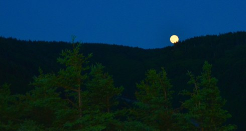 Strawberry Moon on the Skyline Trail