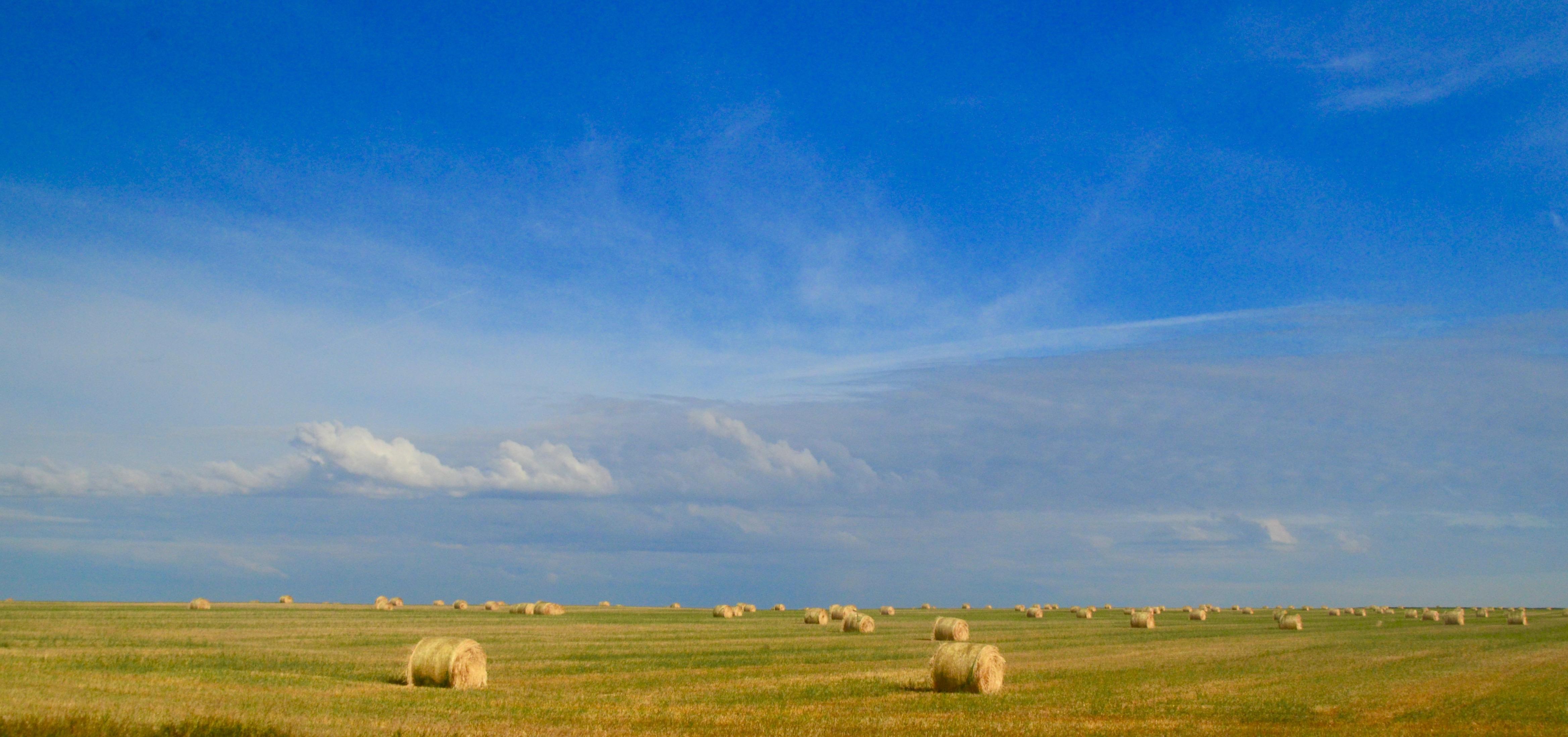 Saskatchewan Land of Living Skies