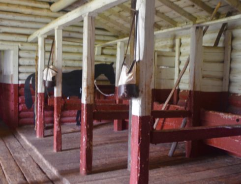 Inside the Stables at Fort Walsh