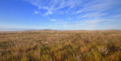 Grasslands National Park Prairie