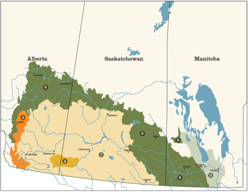 Types of Prairie in Canada