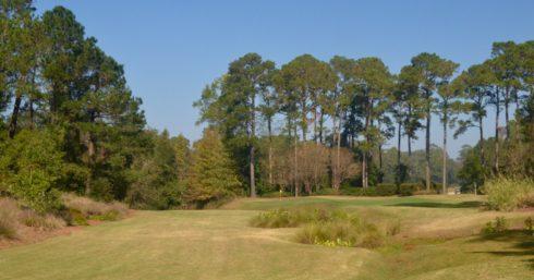 Caledonia Golf Club #11