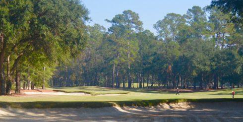Caledonia Golf Club #15