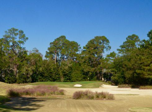 Caledonia Golf Club #17