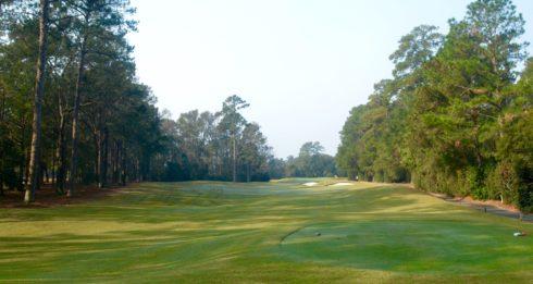 Caledonia Golf Club #5