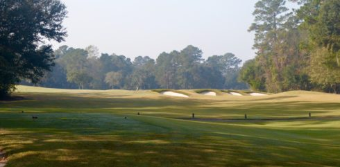 Caledonia Golf Club #8