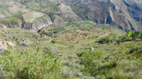 The Way Up Mount Assoro