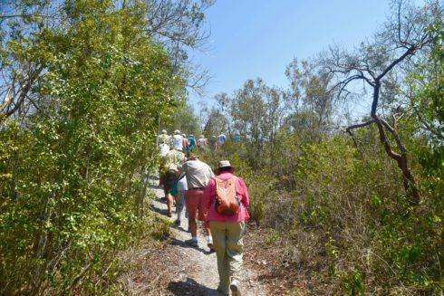 Heading up the Mounds, Mound Key