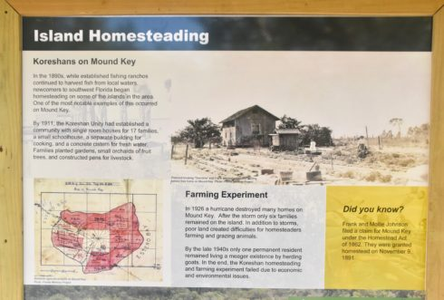 Island Homesteading