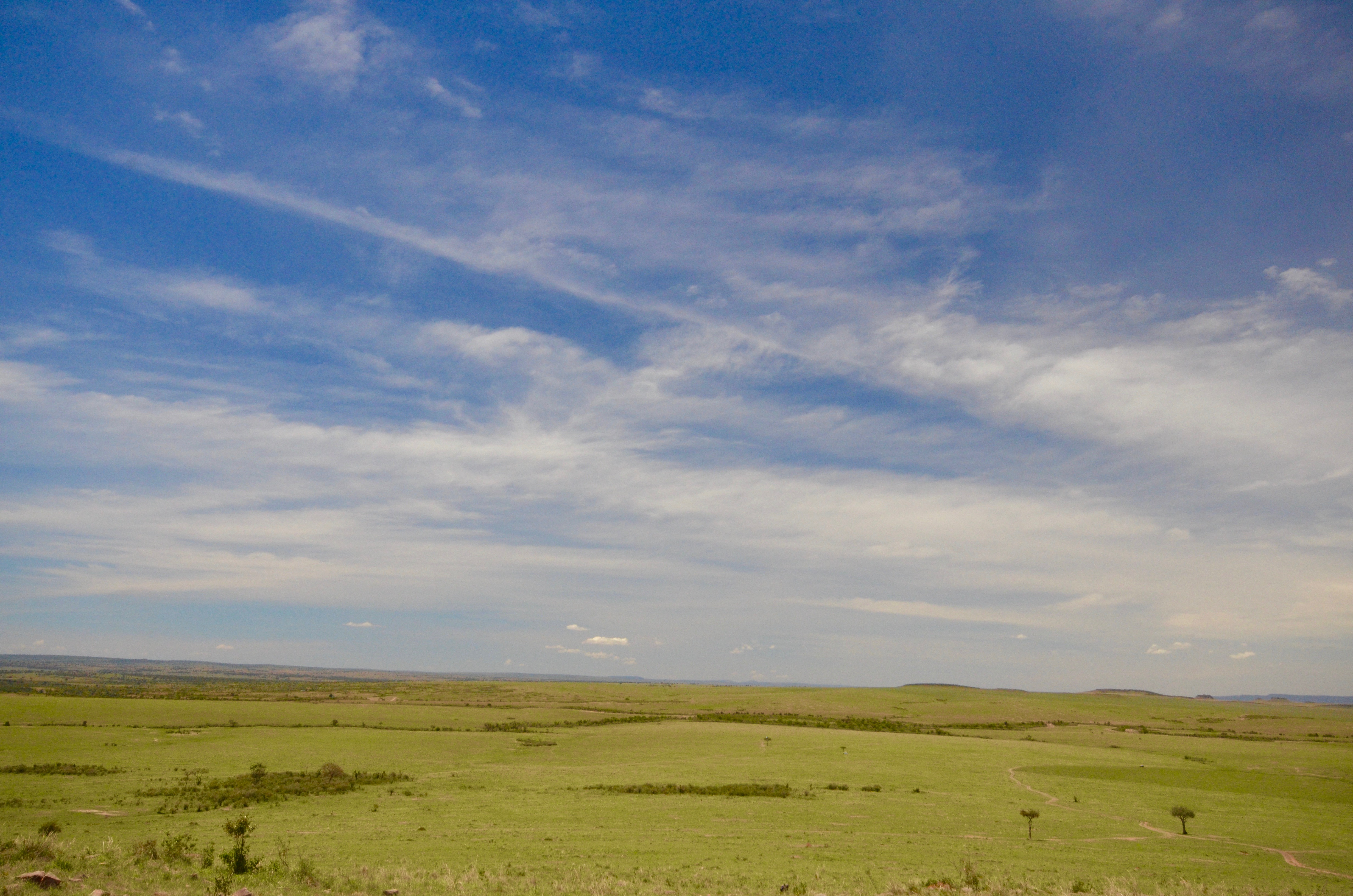 Big Skies on Masai Mara